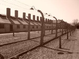 Auschwitz Prison Fence