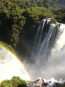 Iguazu with waterfall
