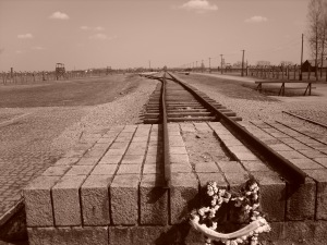 Train to Auschwitz to Death Camp