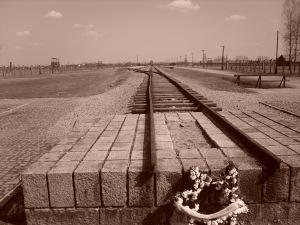 Train to Auschwitz to Death Camp