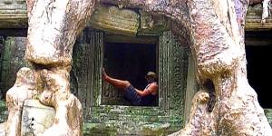 Trees at Angkor Panoramic