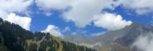 Simpson clouds