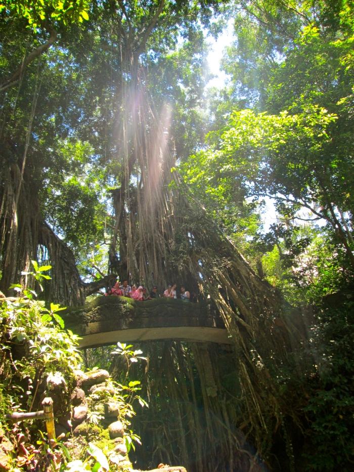 Twenty First Century Nomad Bali